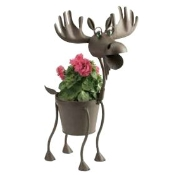 Hal the Moose Planter Thumbnail