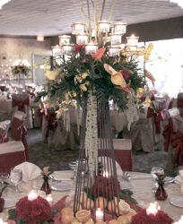 Rentals weddings