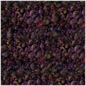 Canyon Wineberry Throw Thumbnail