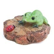Frog & Lady Bug on a Woodchip Thumbnail