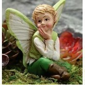 Acorn the Fairy Boy Thumbnail