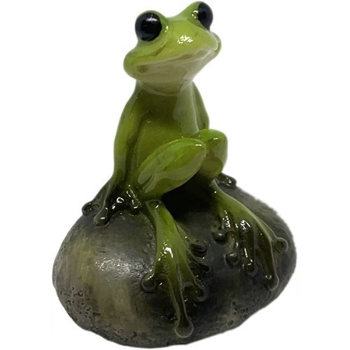 Cute Frog on Stone Thumbnail