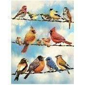 Birds on a Wire Puzzle Thumbnail