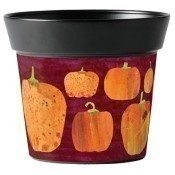 Mixed Pumpkins Art Pot Thumbnail