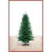 Carolina Fraser Tree Slim 7.5' Thumbnail