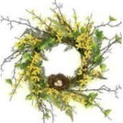 Forsythia Fern Bird's Nest Wreath Thumbnail