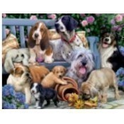Dogs on a Bench Puzzle Thumbnail