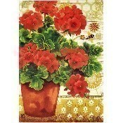 Potted Geraniums Garden Flag Thumbnail