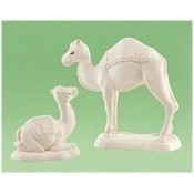 Camel Kisses, Set of 2 Thumbnail
