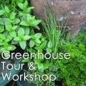 A25 Herb Tour and Workshop May 10th Thumbnail