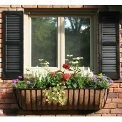 A22 Large Window Box Planter May 4th Thumbnail