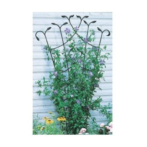 Fan Trellis With Leaves - 80'' Thumbnail